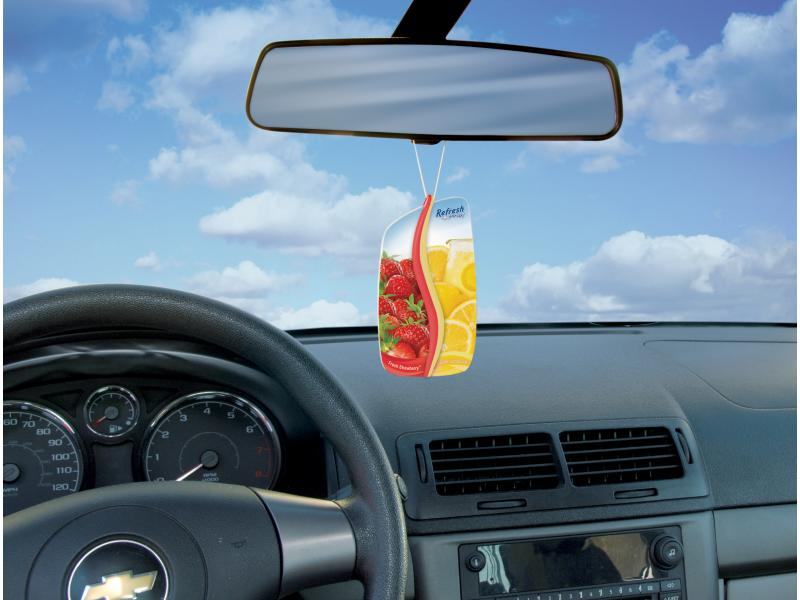Best Car Air Fresheners In The World
